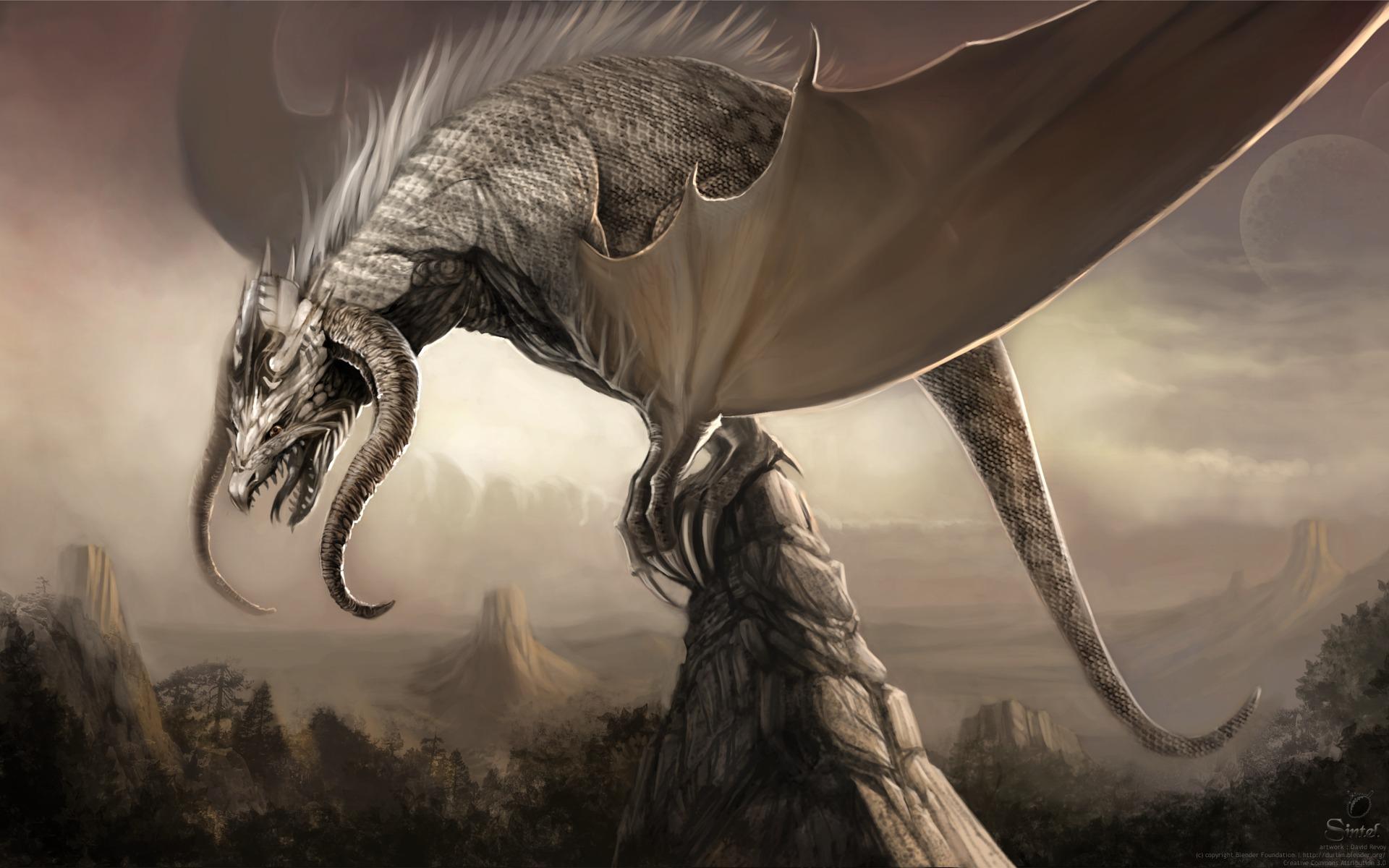 Fantasy Dragon Wallpaper Background 1920 x 1200 Id 78308.